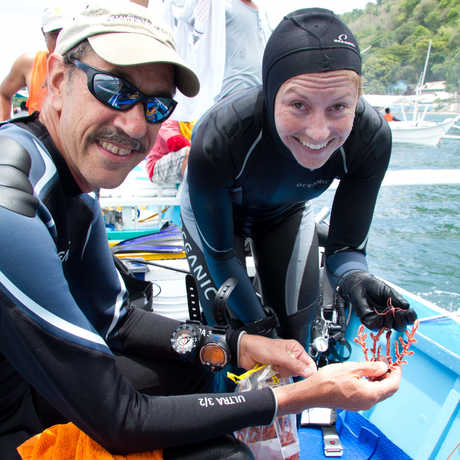 Academy researchers in scuba gear show a specimen collected