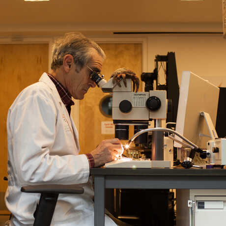 A researcher sits at an imaging station, creating macro images of very small specimens.
