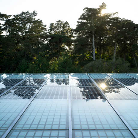 The solar canopy around the perimeter of the Living Roof.