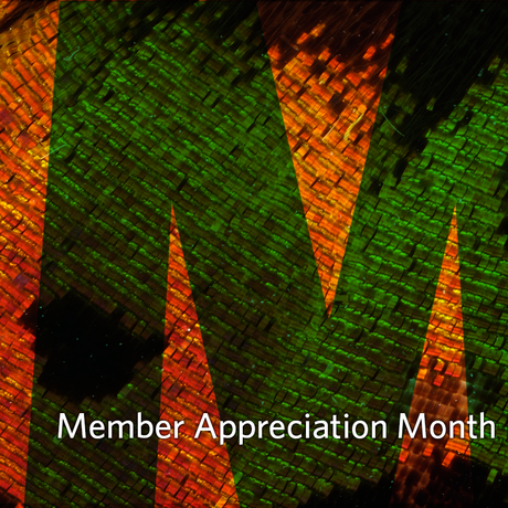 Member Appreciation Month March 2016
