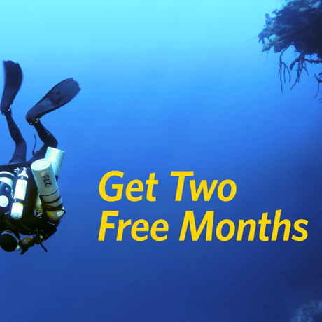 Get Two Free Months