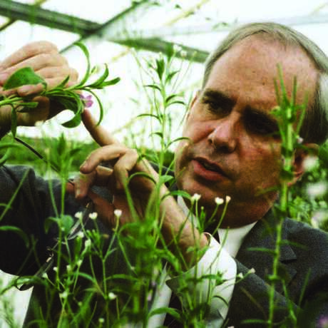 Botanist Peter Raven looks at a flower in a greenhouse