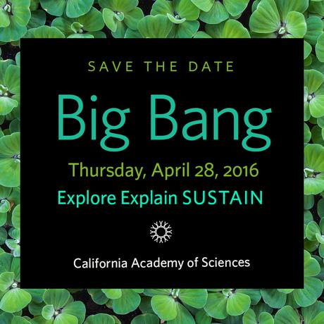 Big Bang Gala 2016