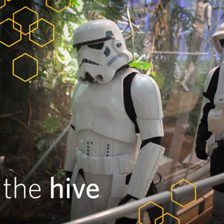 Star Wars storm troopers in the Academy rainforest