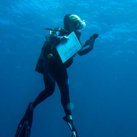 Underwater shot of Emily Darling scuba diving in Mayotte