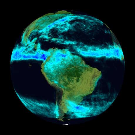 TRMM rainforest data