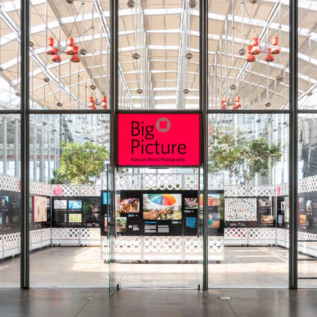 Entrance to BigPicture 2020 exhibit in the Academy Piazza