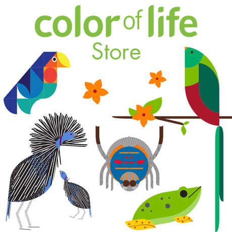 Color of Life Store