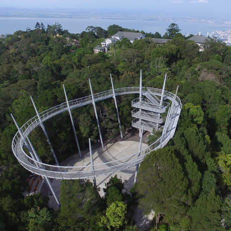 The viewing platform rises above The Habitat reserve on Penang Hill, outside George Town, in Malaysia.