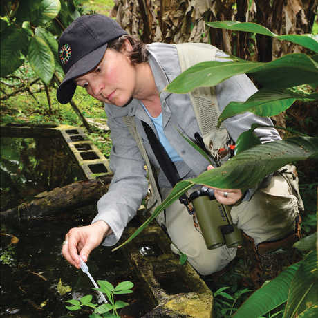 Shannon Bennett samples mosquito larvae in Costa Rica