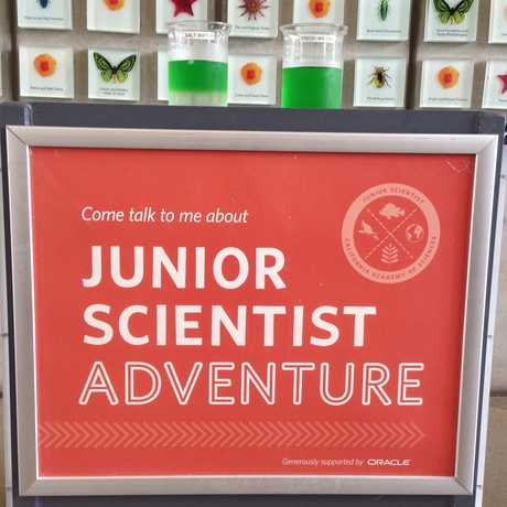 Junior Scientist Adventure: Live Science Experiment