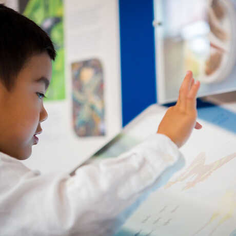 A young visitor explores the Macro Color magnifier on exhibit at the Academy