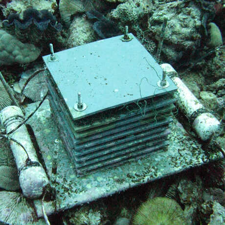 Example of an ARMS device located in the Northern Pacific. Image by NOAA.