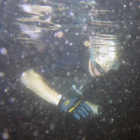 Academy doctor Matt Lewin underwater