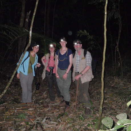 The arachnology team collecting at night in lowland forests.
