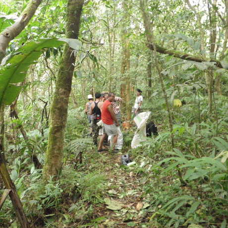 Scientists and guides in a low elevation forest in Mt. Banahaw