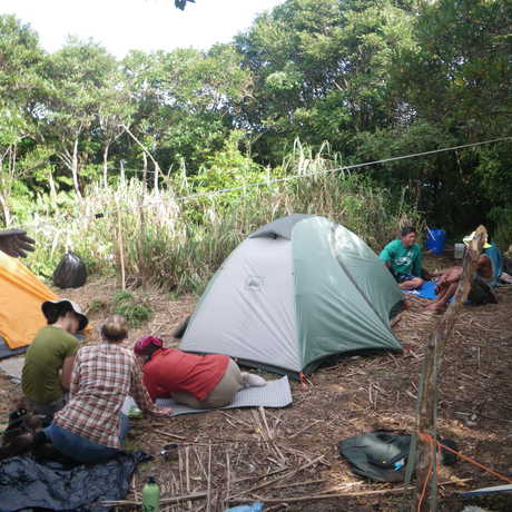 Scientists and guides relax at Banahaw summit camp