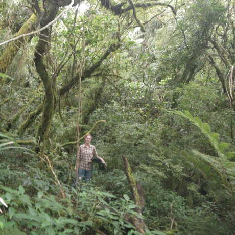A woman in the forests at the Mt. Banahaw summit