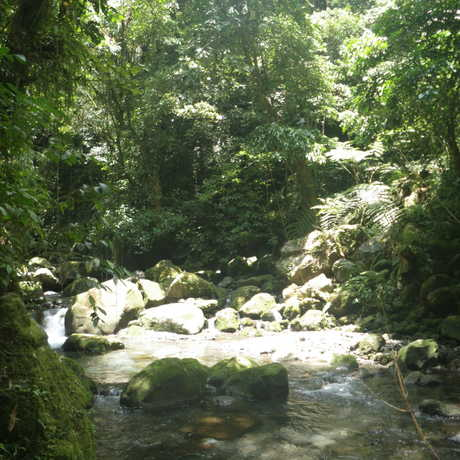 Taitai River located at Mt. Banahaw