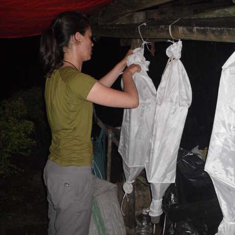 Vanessa is hangs winkler funnels at Banahaw base camp