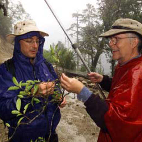 Botanists Peter Fritsch and Bruce Barthalomew. Photo Dong Lin.
