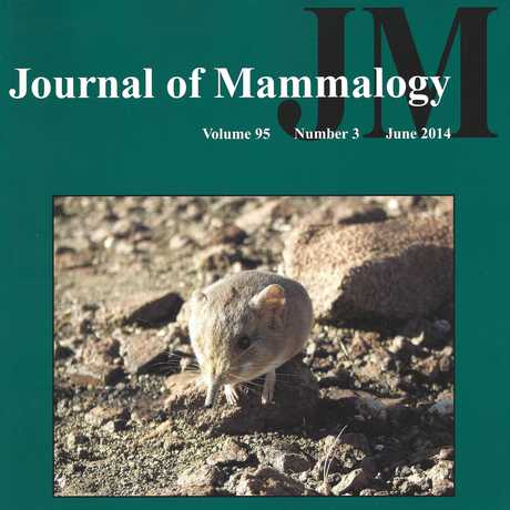 Journal of Mammalogy Cover