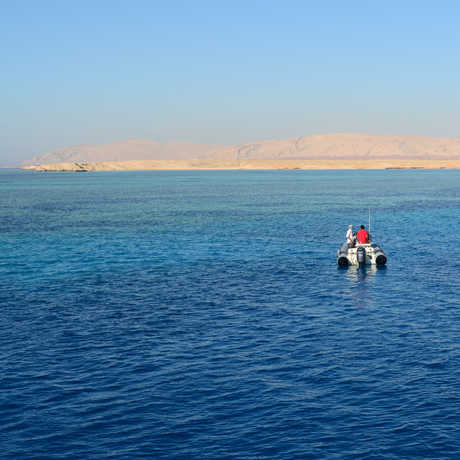 Luiz Rocha's team afloat on the Red Sea