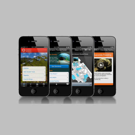 View of four mobile apps