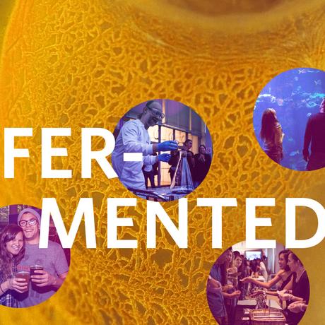 fermented nightlife