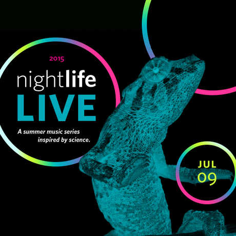 NightLife LIVE july