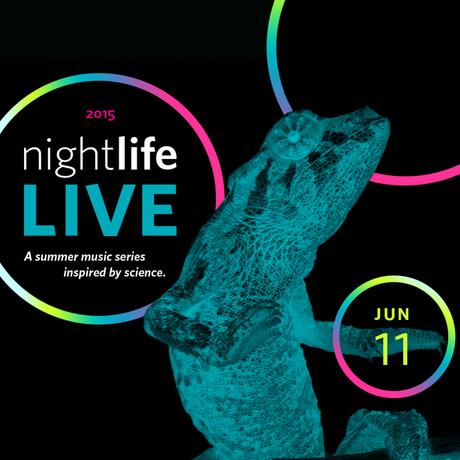 NightLife LIVE June