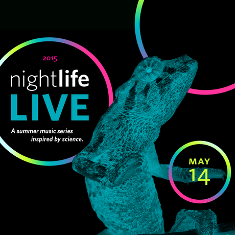 May NightLife LIVE event banner