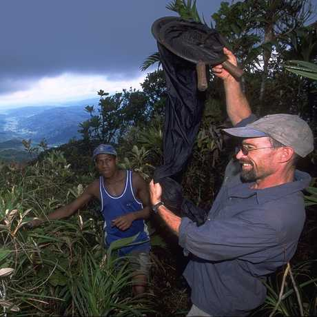 Brian Fisher collecting in Madagascar