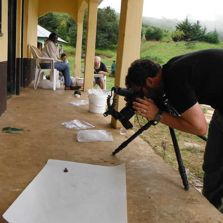 Photographing specimens in the field