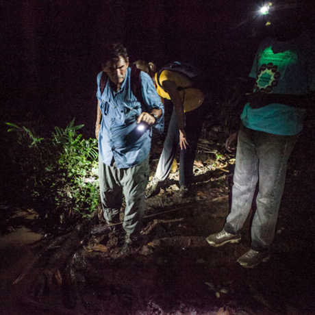 Bob Drewes and team on a night-hike in São Tomé and Príncipe