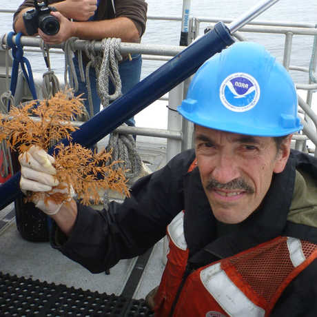 Gary Williams takes black coral from an ROV collections tray in the Farallones.