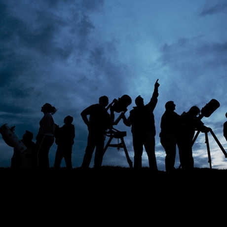 A group of skywatchers stand silhouetted under the night sky