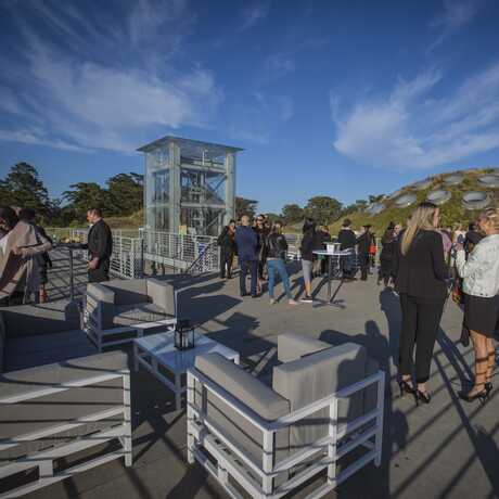 Event on Living Roof under sunny skies