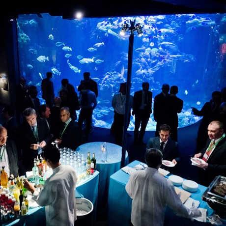 Reception in Aquarium