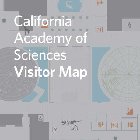 interactive visitor map