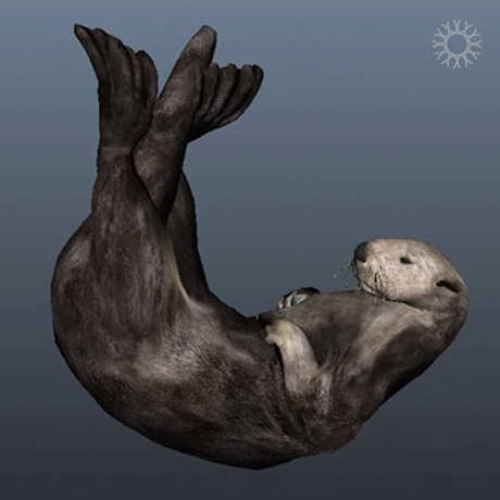 Image of sea otter illustration