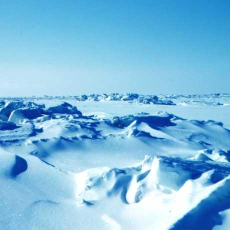 Winter sea ice on the Beaufort Sea, NOAA