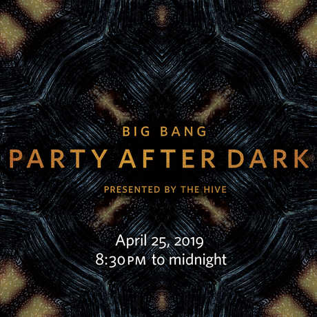 Big Bang: Party After Dark graphic with tortoise shell background