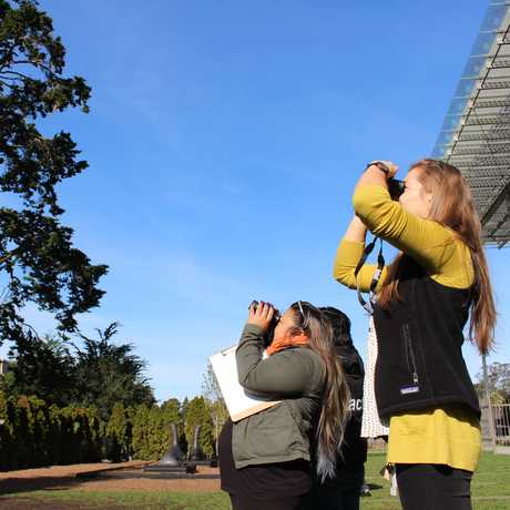 Bird-watchers use binoculars outside the Academy