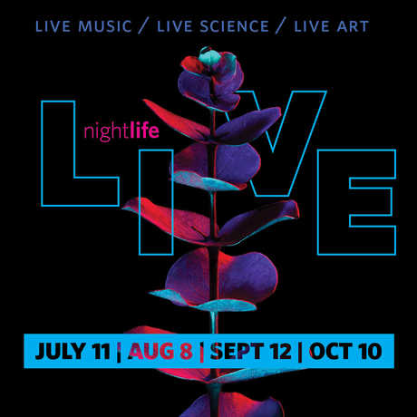 NightLife LIVE 2019