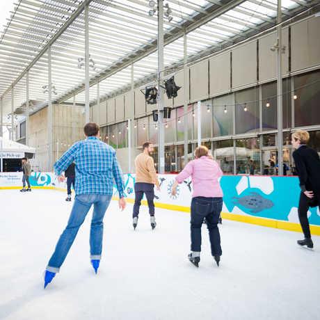Holiday ice rink