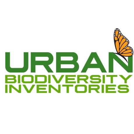Green words-Urban Biodiversity Inventories and a monarch butterfly drawing