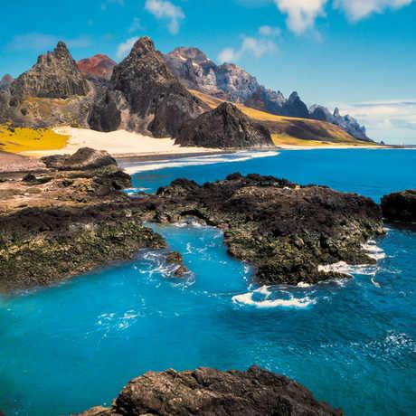 Academy island biogeography