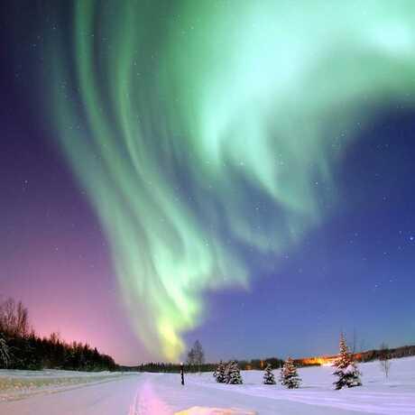polar night sky calacademy nightlife morrison planetarium