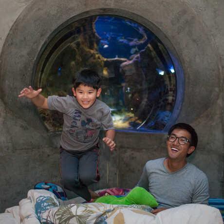Boy jumps on air mattress at Penguins+Pajamas sleepover